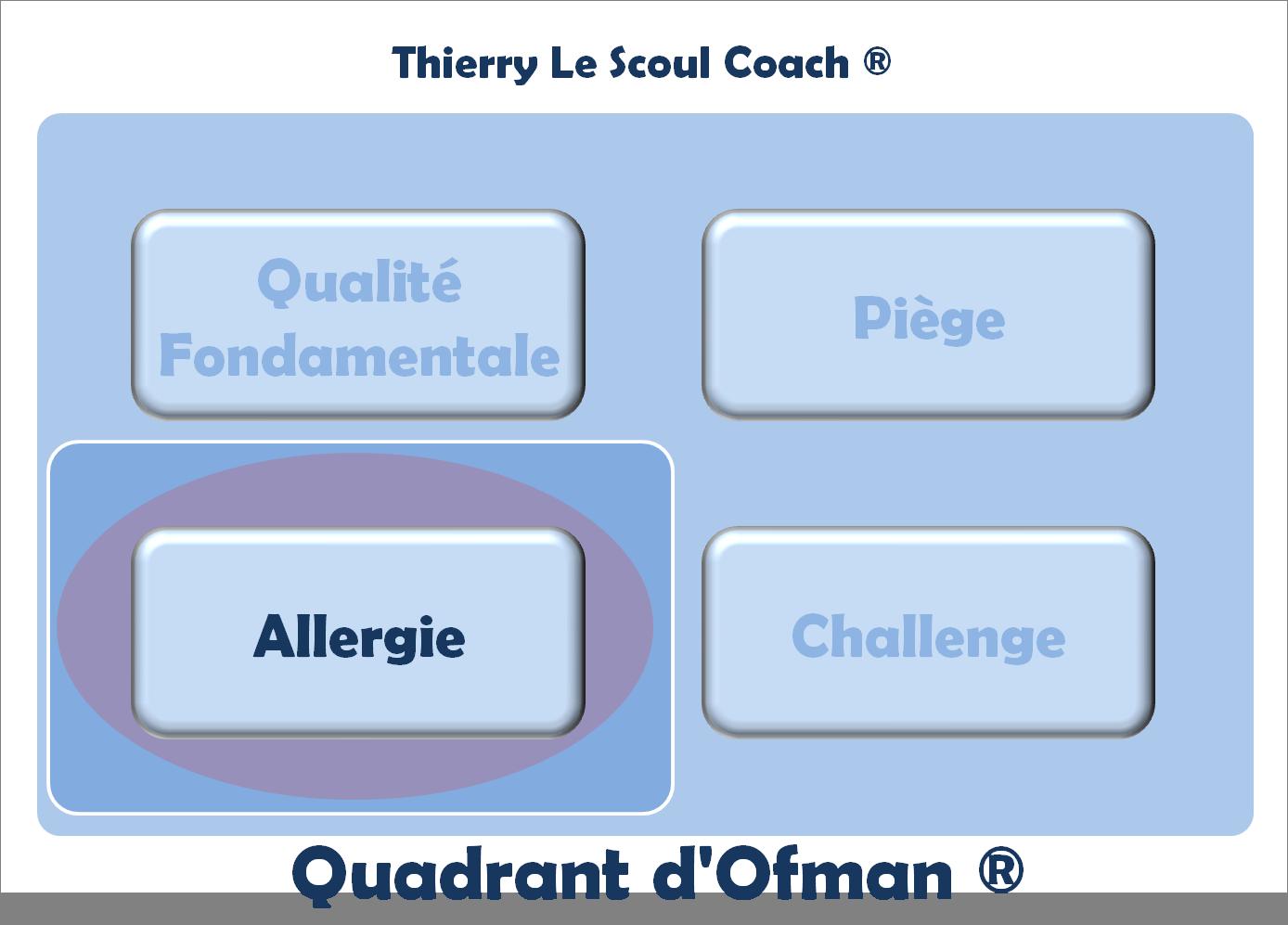 Quadrant d 39 ofman archives coaching performance for Effet miroir word